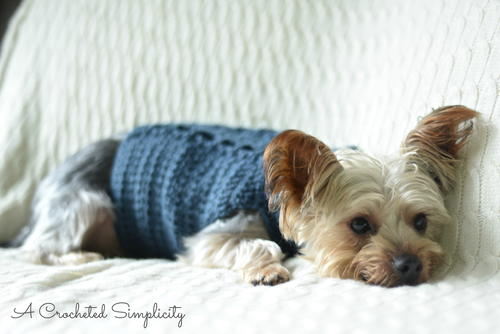 Cabled Dog Sweater Free Crochet Pattern