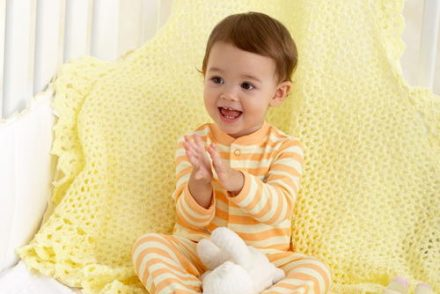 Lace Border Baby Blanket Free Crochet Pattern