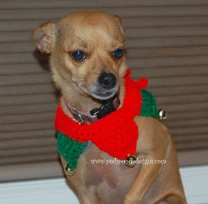 Santa's Helper Dog Collar Free Crochet Pattern