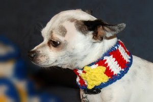 Slip On Patriotic Dog Collar Free Crochet Pattern